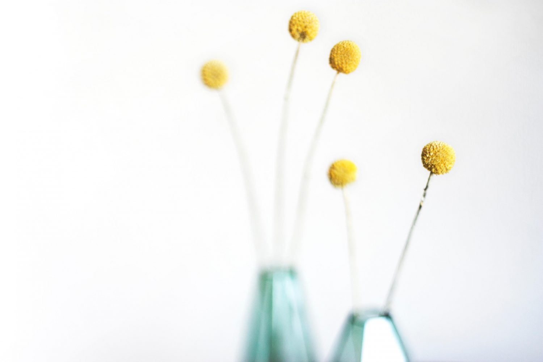 Fleurs jaunes comment combien
